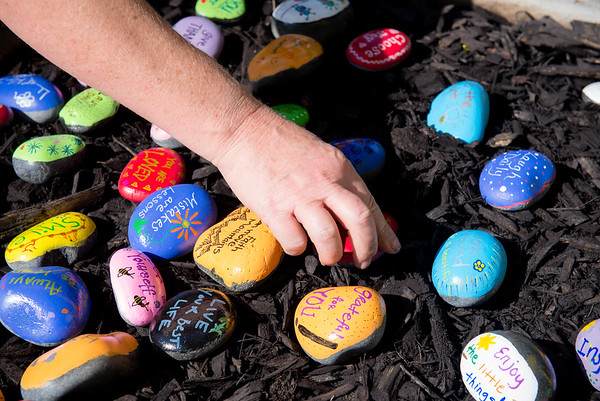 Rocks Planted at WesternU for Inspiration and Encouragement