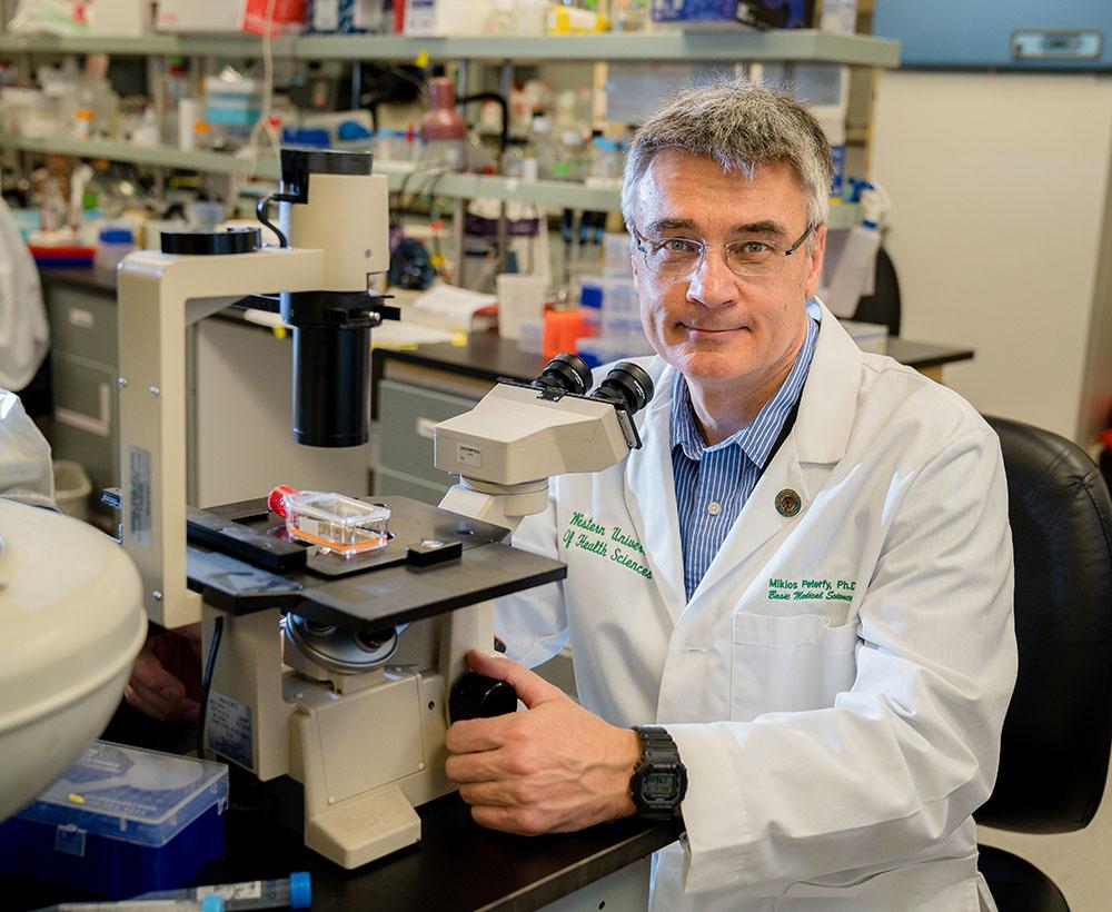 COMP Department of Basic Medical Sciences Professor of Biochemistry Miklos Peterfy, PhD